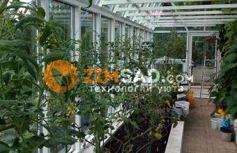 Строим зимние сады, оранжереи, теплицы во всех регионах России